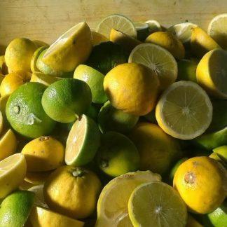 Agropic - Succo di Bergamotto Calabrese